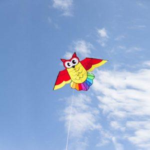 Owl Kite - Eulen-Drachen